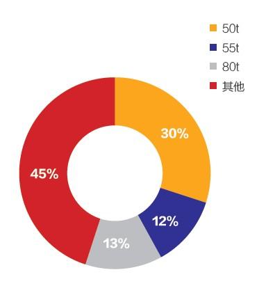 2013年1- 8月我国汽车起重机主要机型销量占比
