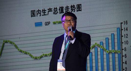 范剑平:下半年经济见底 改革及创新驱动未来