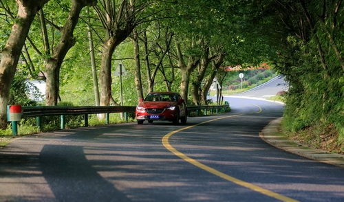 浙江全力打造美丽公路全国样板 助力现代交通示范省建设
