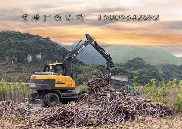 宝鼎轮式抓木机甘蔗装车作业