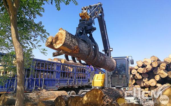 宝鼎轮式抓木机进行木材卸车作业