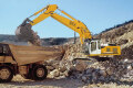 R 954 C Litronic履带挖掘机