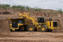 777G(Tier2)矿用自卸车图片