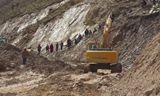 萌萌哒的挖土机 把大卡车拽出泥坑