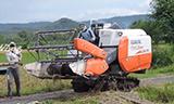 久保田DC-35小型水稻收割机工作