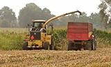 玉米秸秆收割