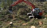 日立挖掘机在林区工作