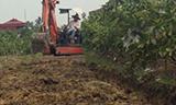 小型挖掘机清理农田