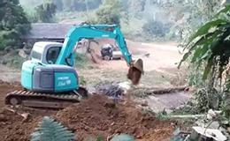 神钢sk60 sr挖掘机