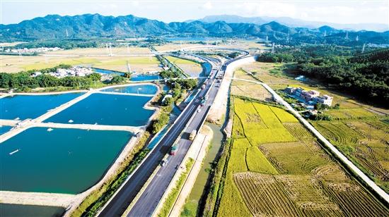 """新台高速南延线去年底正式通车,台山地区把""""断头路""""打通,跟西部沿海高速连接起来,成为连接广佛、珠海、阳江等地的重要交通工程"""