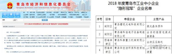 2018年度青岛市工业中小企业'隐形冠军'企业名单