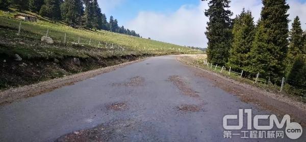 景区内破损需维修的路面