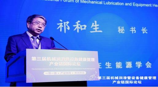 中国可再生能源学会秘书长祁和生讲话