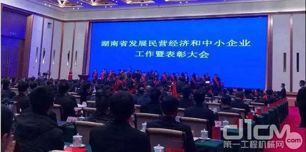 湖南省发展民营经济和中小企业工作暨表彰大会