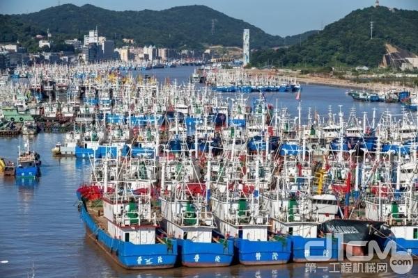 舟山渔船进港伏休