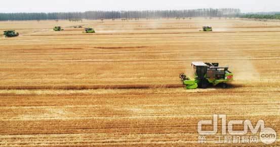 """中联重科农事服务队正在奔赴河南、河北等地收割小麦,参与""""三夏""""机收会战"""