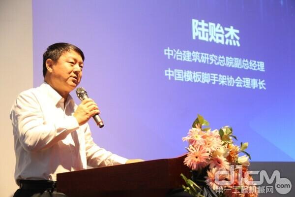 中冶建筑研究总院副总经理,中国模板脚手架协会理事长陆贻杰先生
