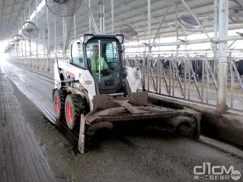 山猫搭载推粪板在施工中无死角