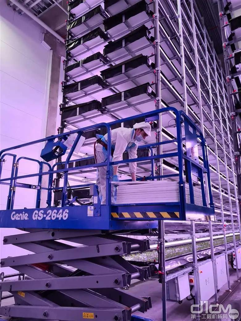 吉尼Genie剪叉式高空作业平台在丹麦垂直农场的应用