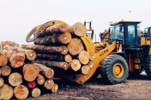 山工机械:时间紧强度大,木材装卸全靠它