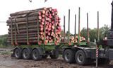 斯堪尼亚G490 6x6 轮卡车工作